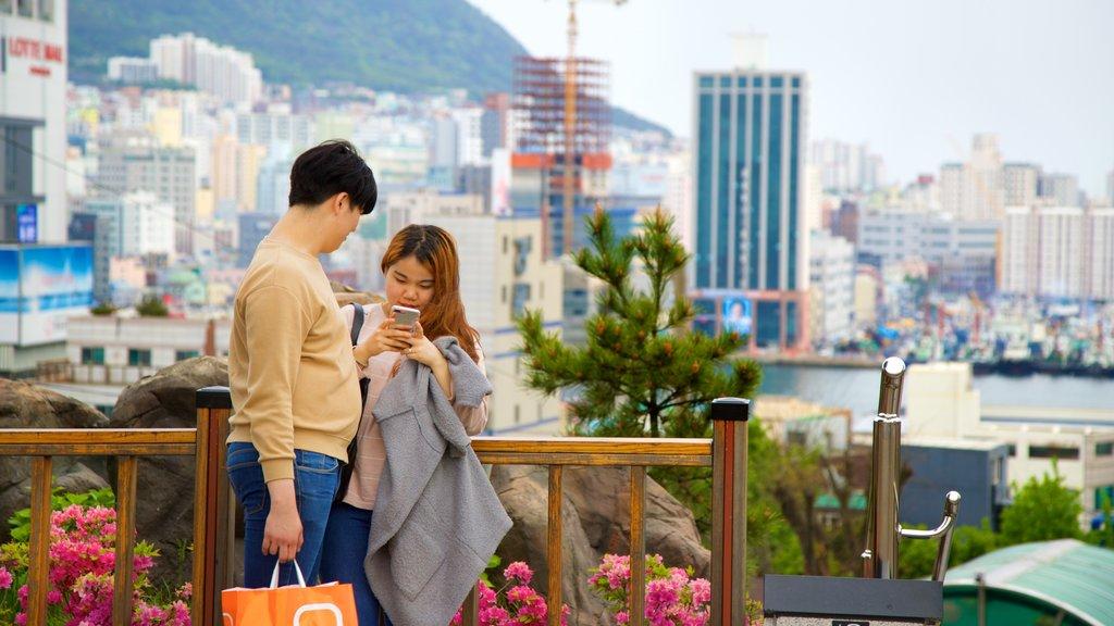 Parque Yongdusan ofreciendo flores silvestres y una ciudad y también una pareja