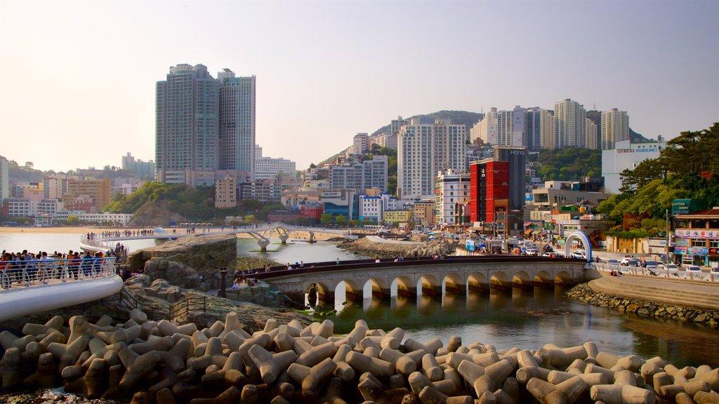 Playa de Songdo ofreciendo una ciudad, una ciudad costera y un rascacielos