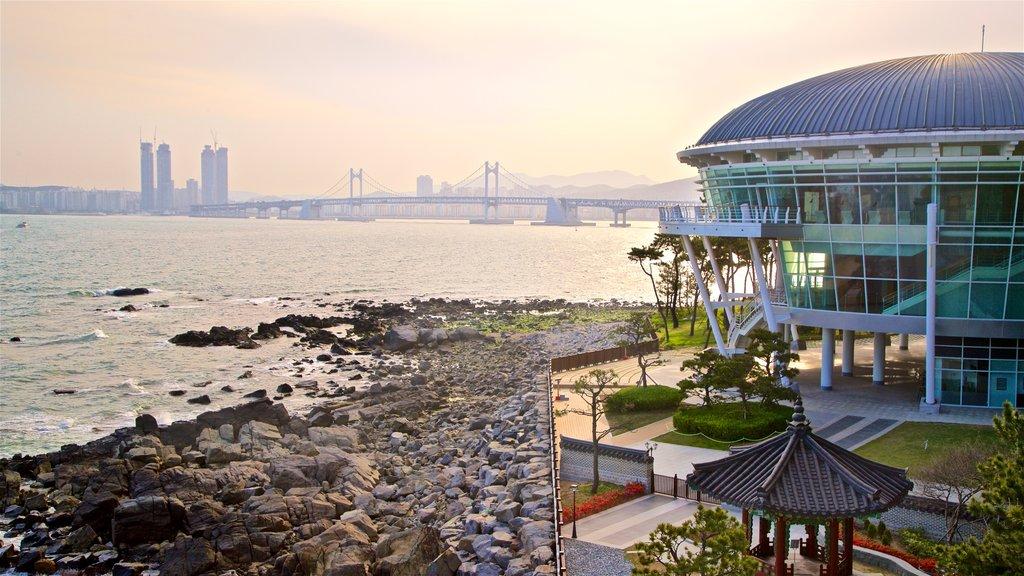 Parque APEC Naru que incluye costa escarpada, una ciudad y un puente