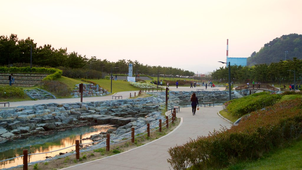 Busan which includes a sunset, a river or creek and a park