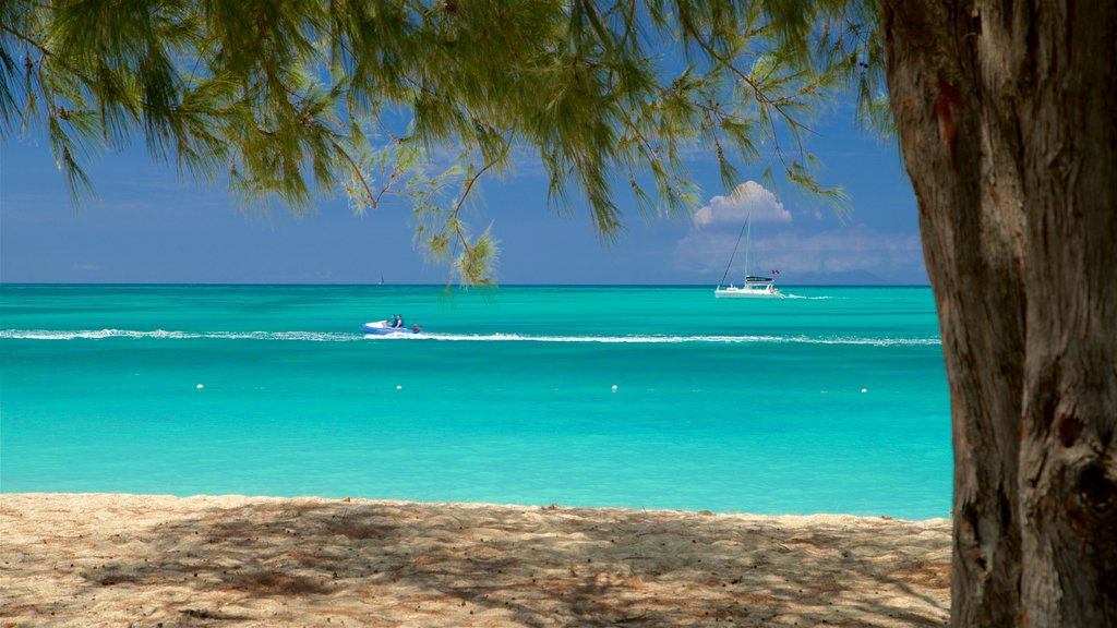 Antigua showing a beach, tropical scenes and jet skiing