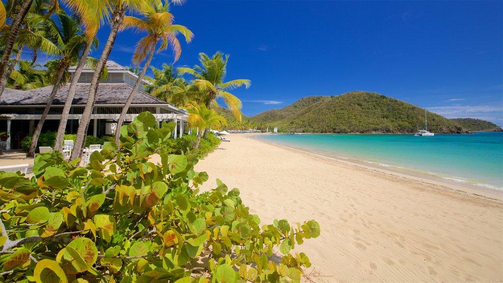 Antigua featuring tropical scenes, a beach and general coastal views
