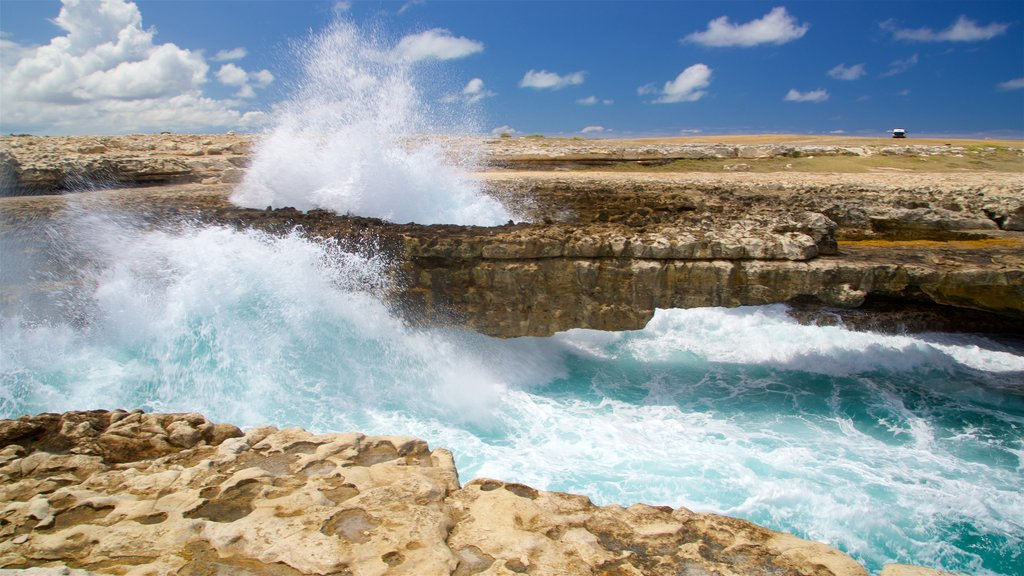 Antigua featuring surf and rocky coastline