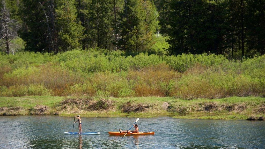 Oxbow Bend ofreciendo un río o arroyo, humedales y kayak o canoa
