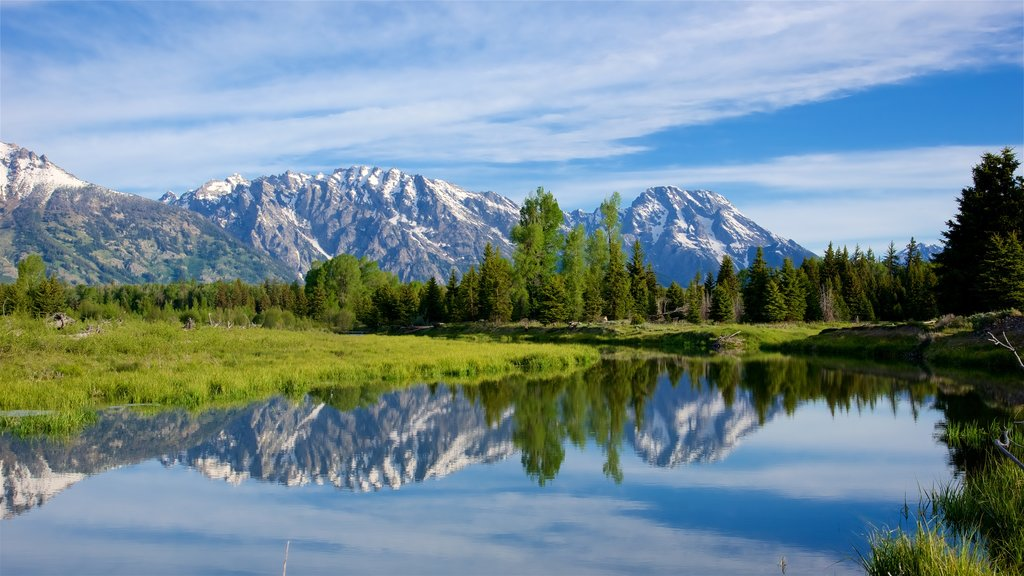 Schwabacher\'s Landing showing mountains, tranquil scenes and a river or creek