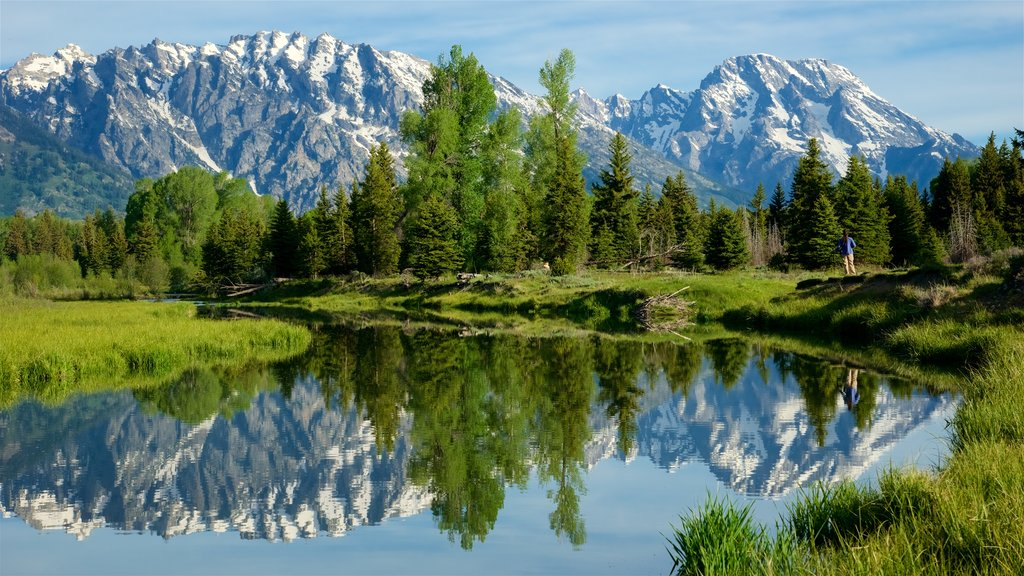 Schwabacher\'s Landing showing a river or creek, mountains and tranquil scenes