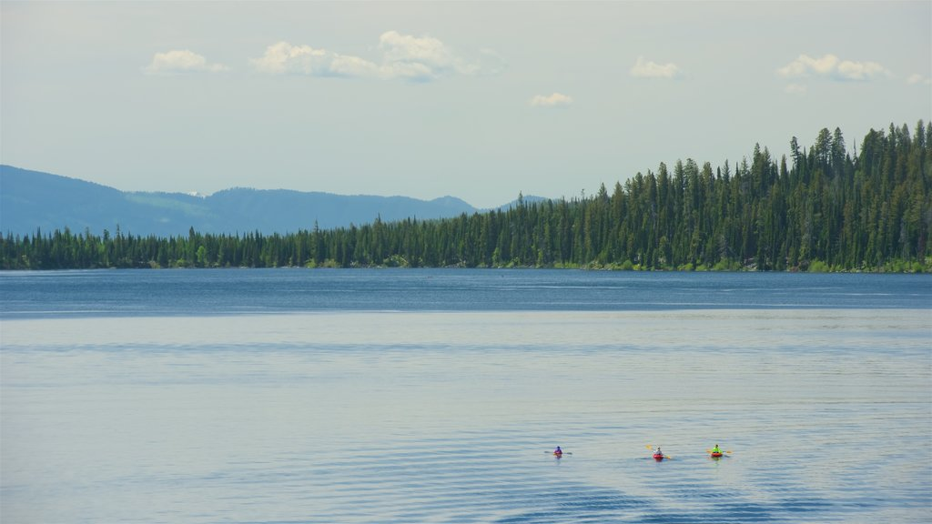 Jenny Lake which includes a lake or waterhole and kayaking or canoeing as well as a small group of people