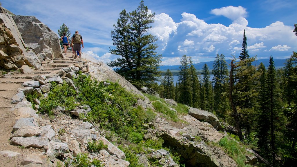 Jenny Lake featuring hiking or walking and tranquil scenes as well as a small group of people