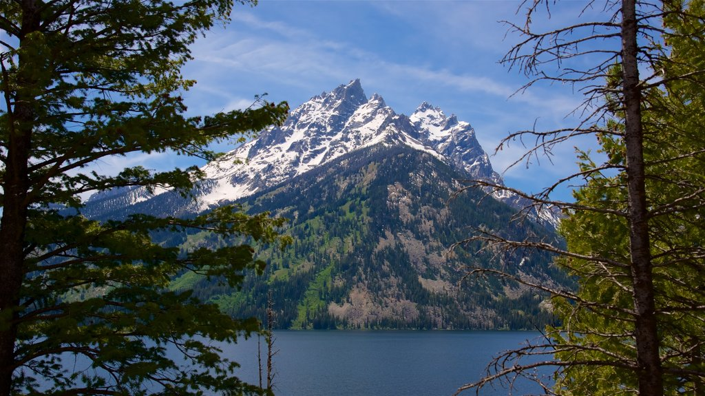 Jenny Lake featuring mountains and a lake or waterhole