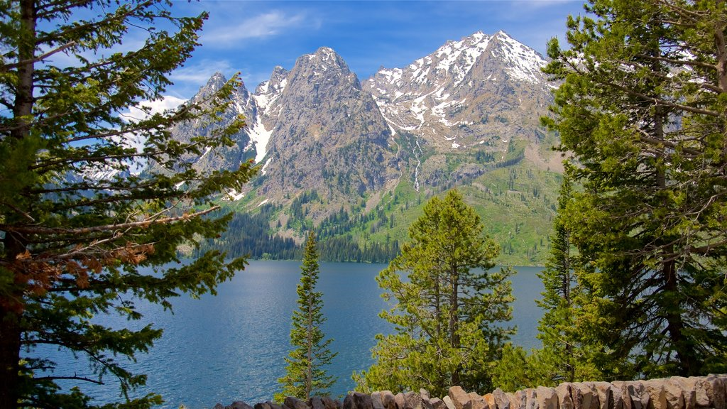 Jenny Lake which includes mountains and a lake or waterhole