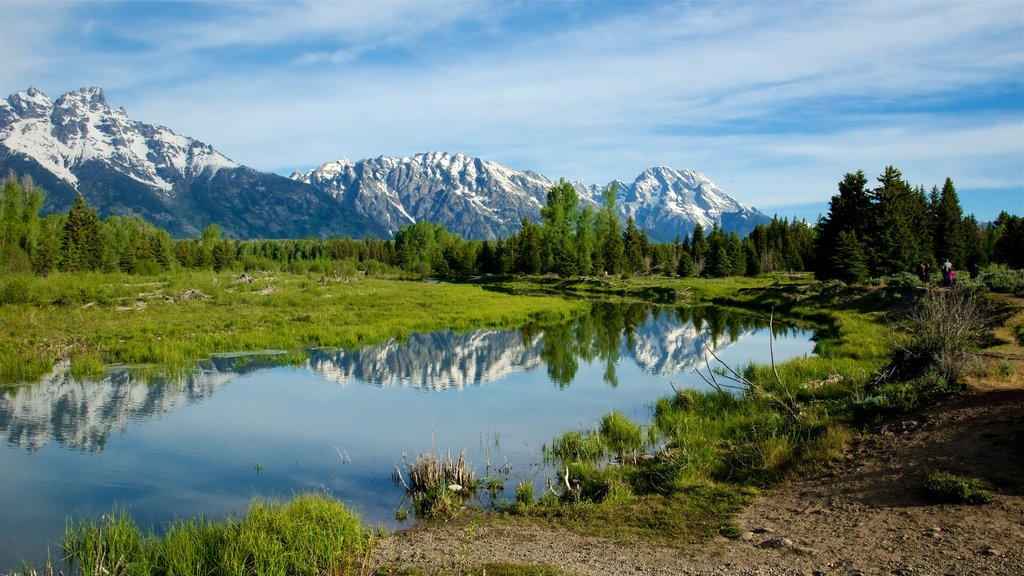 Schwabacher\'s Landing showing a river or creek, tranquil scenes and mountains