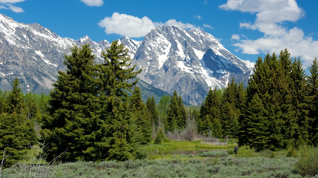 Schwabacher\'s Landing featuring mountains and tranquil scenes