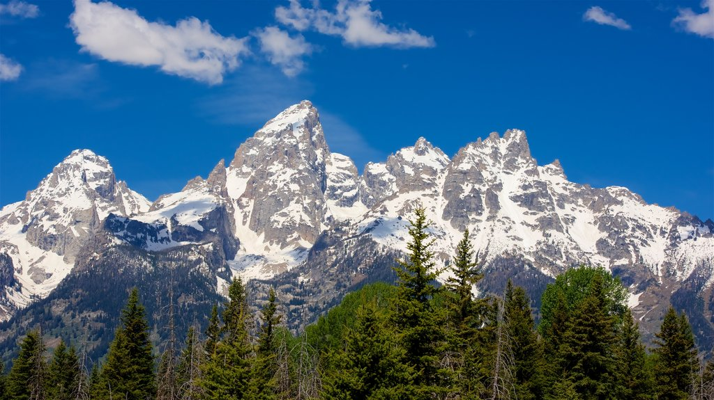 Schwabacher\'s Landing showing snow and mountains