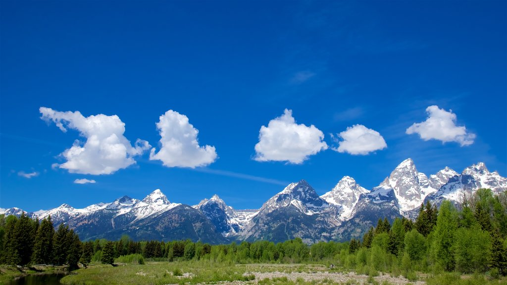 Schwabacher\'s Landing showing landscape views, mountains and tranquil scenes