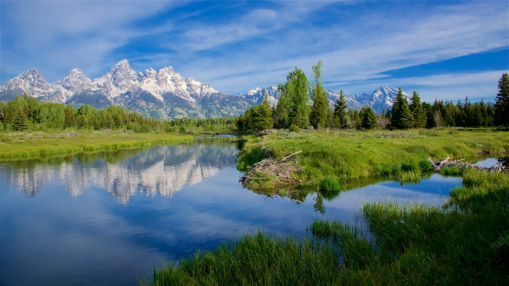 Schwabacher\'s Landing featuring a river or creek, tranquil scenes and landscape views