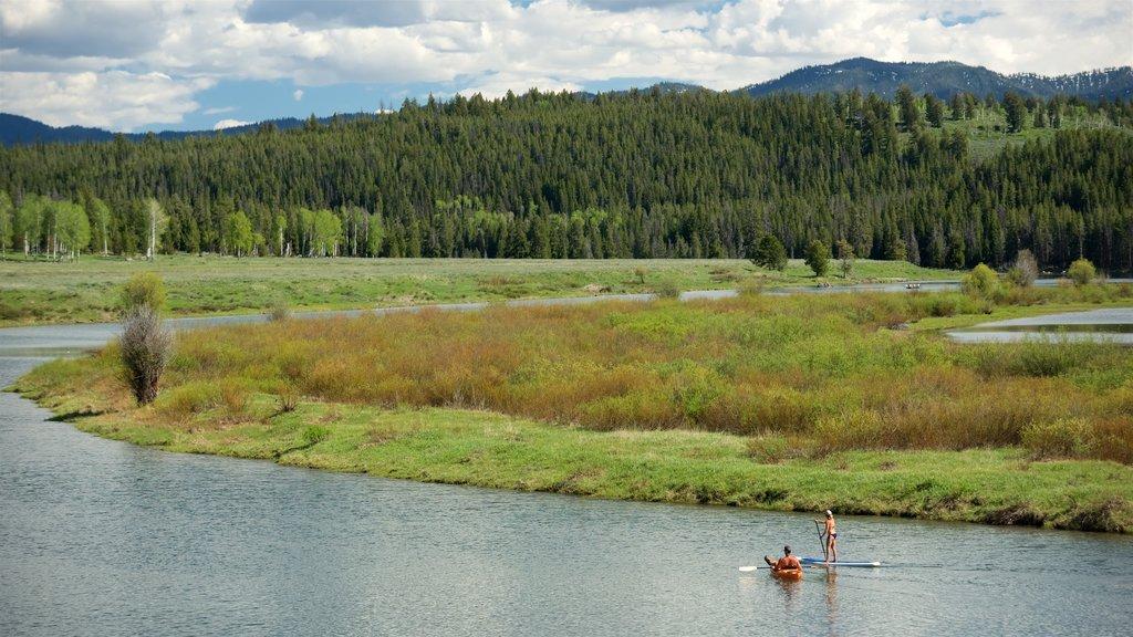 Oxbow Bend mostrando kayak o canoa, humedales y vistas de paisajes