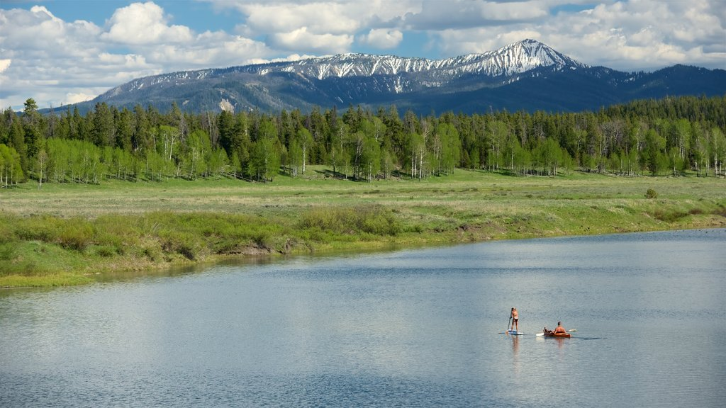 Oxbow Bend featuring landscape views, kayaking or canoeing and wetlands