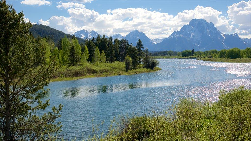 Oxbow Bend ofreciendo un río o arroyo, escenas tranquilas y montañas