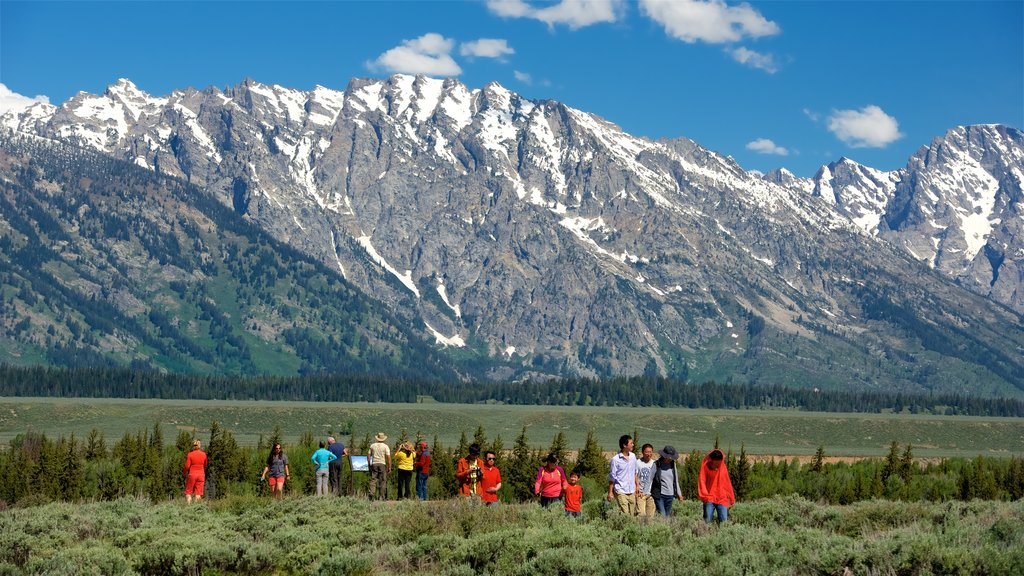 Grand Teton National Park showing landscape views, hiking or walking and tranquil scenes