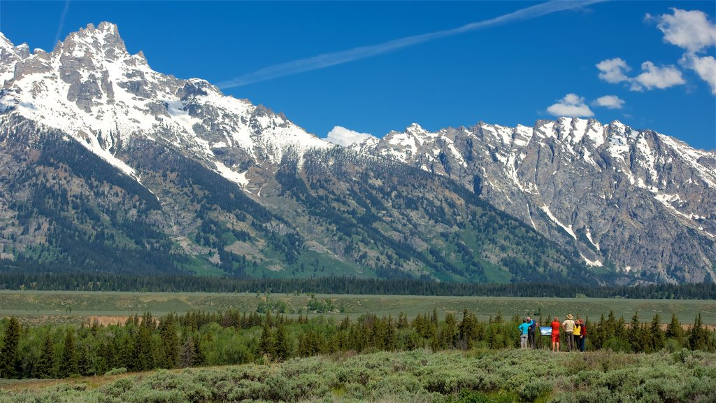 Grand Teton National Park featuring landscape views, tranquil scenes and mountains
