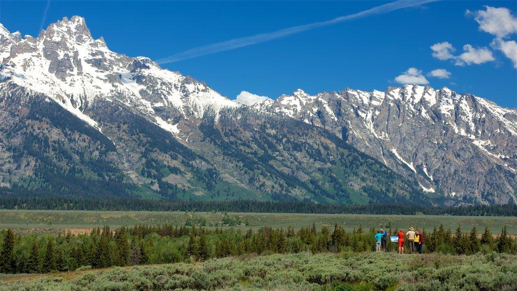 Parque Nacional Grand Teton mostrando vistas de paisajes, montañas y escenas tranquilas