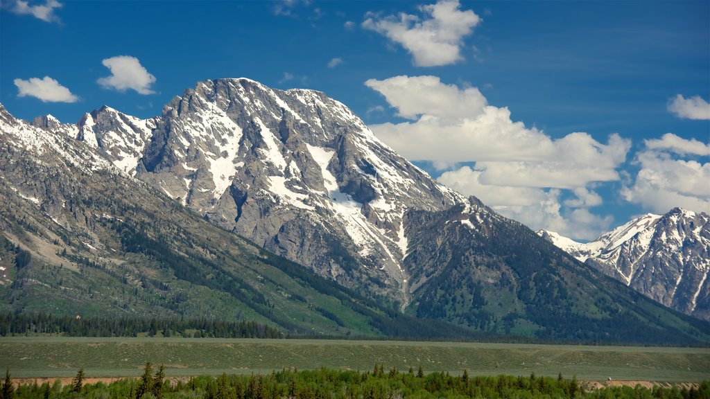 Grand Teton National Park showing mountains, landscape views and tranquil scenes