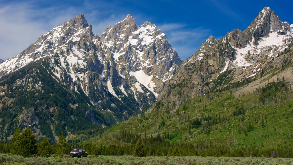 Grand Teton National Park showing mountains and landscape views