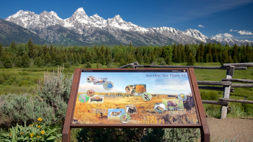 Grand Teton National Park featuring mountains, landscape views and tranquil scenes