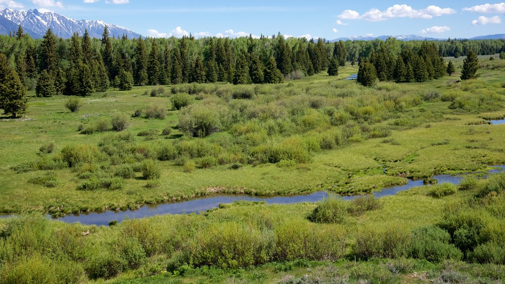 Grand Teton National Park featuring landscape views, tranquil scenes and a river or creek