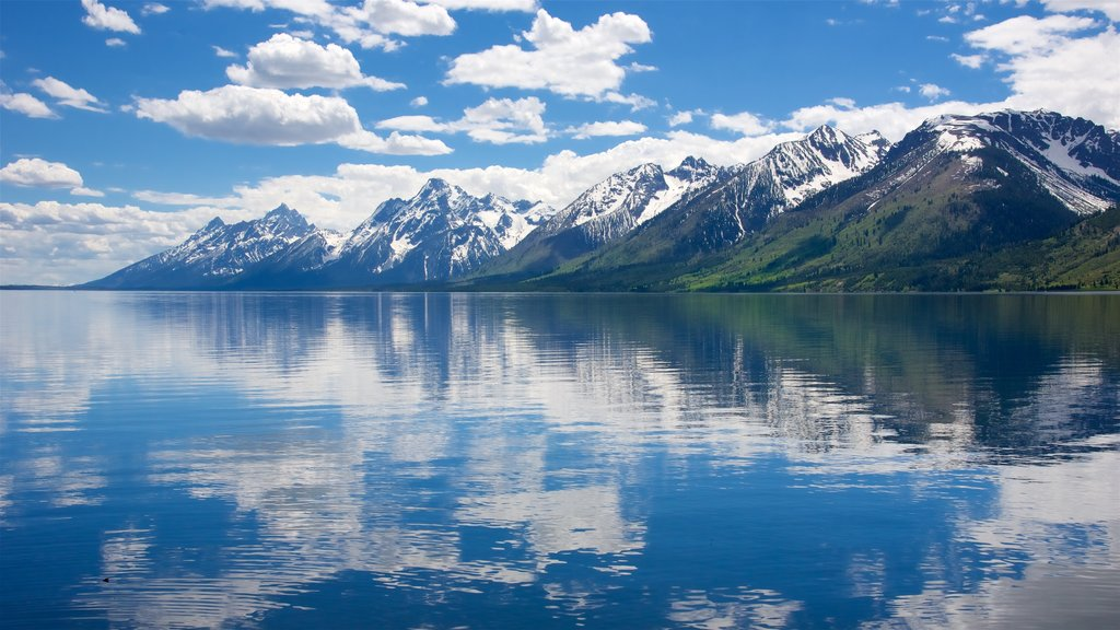 Jackson Lake showing mountains and a lake or waterhole