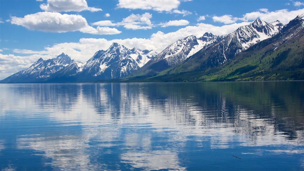 Jackson Lake which includes a lake or waterhole and mountains
