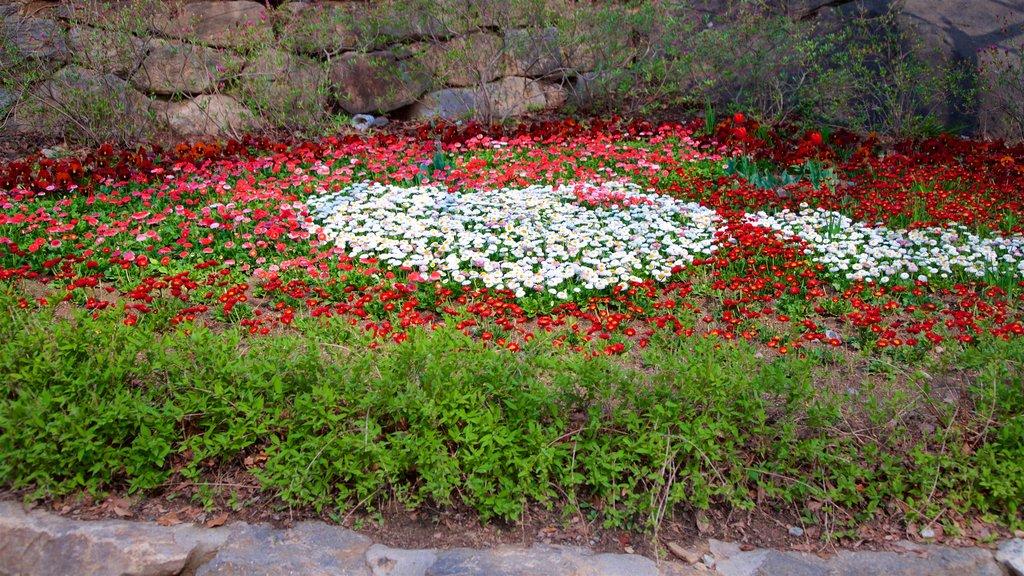 Jeondeungsa Temple featuring wildflowers