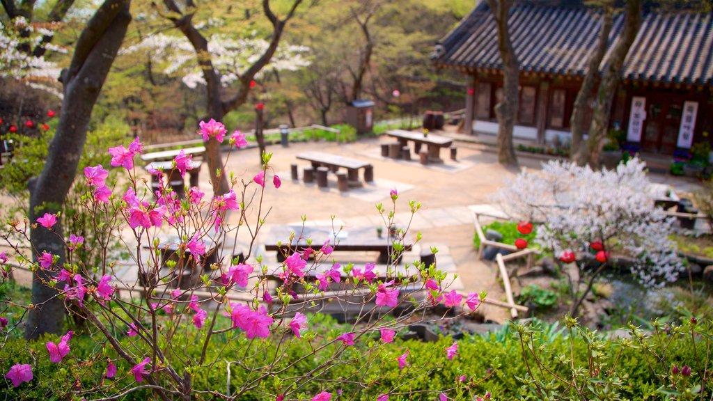 Jeondeungsa Temple showing wildflowers