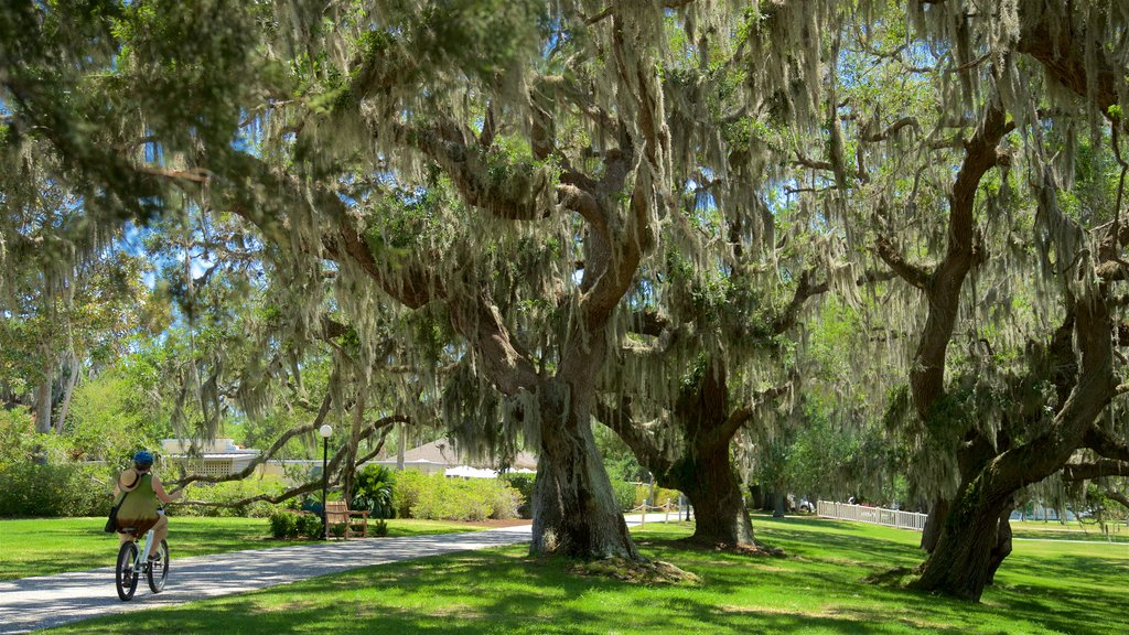 Jekyll Island showing cycling and a garden as well as an individual femail