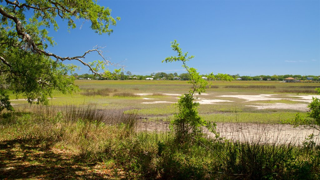 Bloody Marsh Battle Site featuring tranquil scenes and landscape views