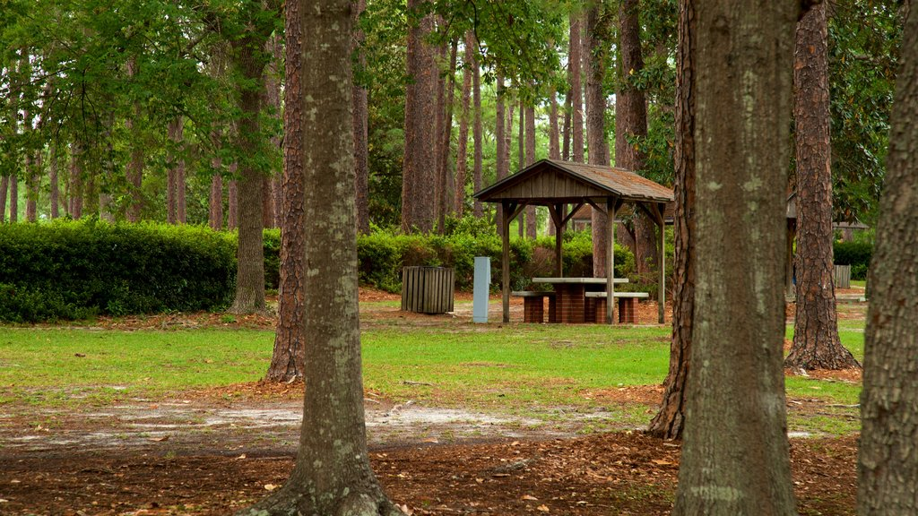 Fulwood Park featuring a garden