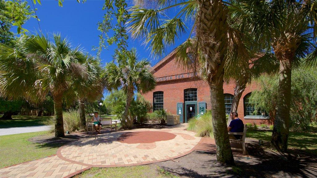 Georgia Sea Turtle Center which includes a garden