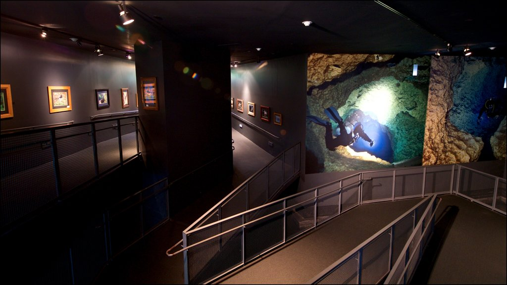 Flint RiverQuarium which includes marine life and interior views