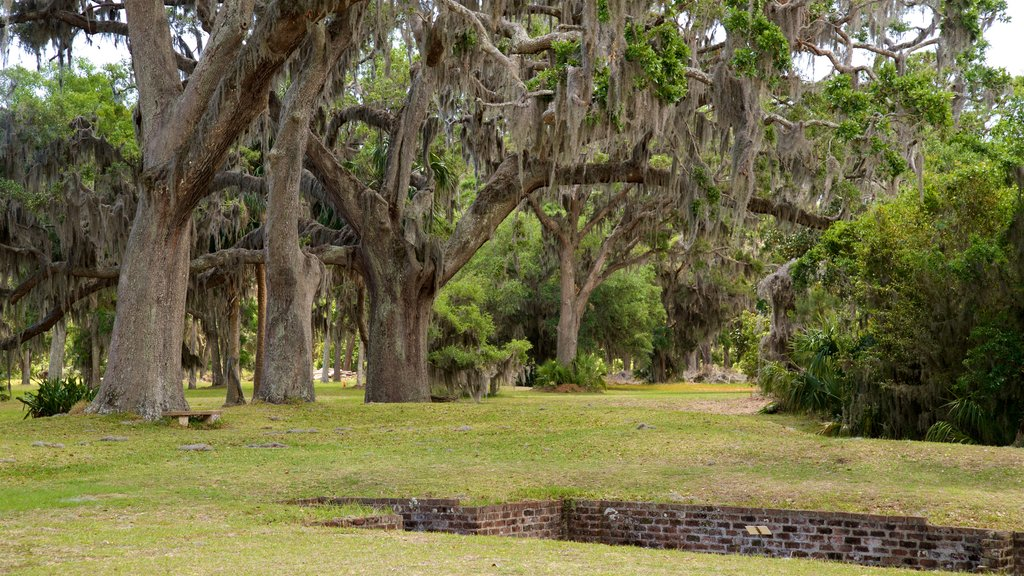 Fort Frederica National Monument which includes a garden