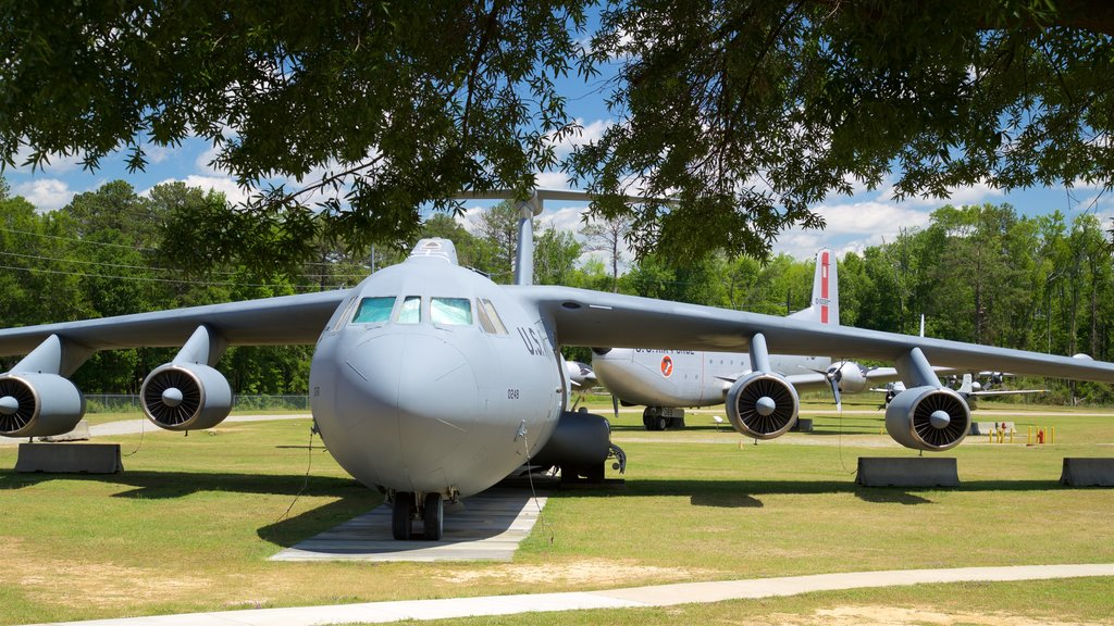 Warner Robins Museum of Aviation showing a garden, heritage elements and military items