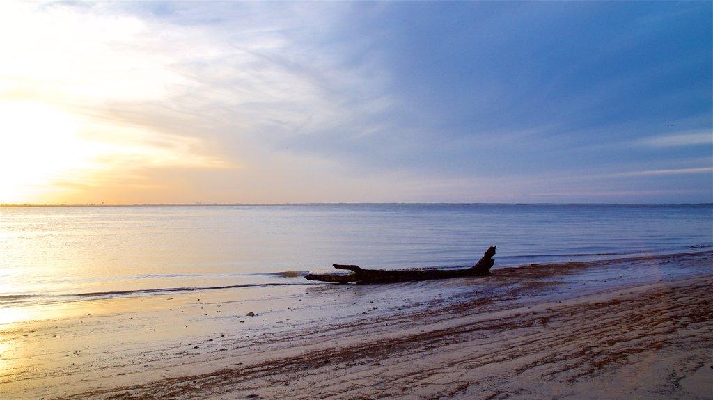 Driftwood Beach featuring a sandy beach, a sunset and general coastal views