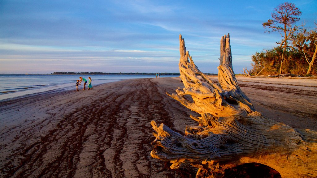 Driftwood Beach which includes a sunset, general coastal views and a sandy beach