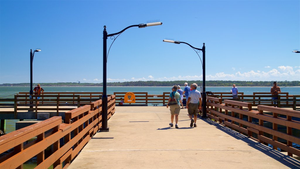 St. Simons Island Pier which includes general coastal views as well as a couple