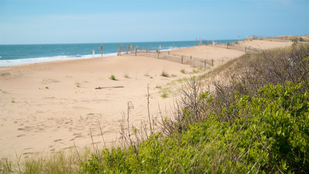 Bethany Beach which includes a sandy beach and general coastal views