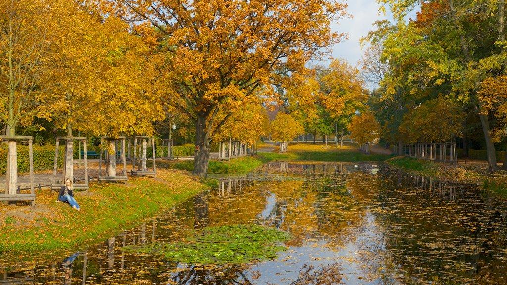 Tiergarten Soviet War Memorial showing forest scenes, autumn leaves and a pond