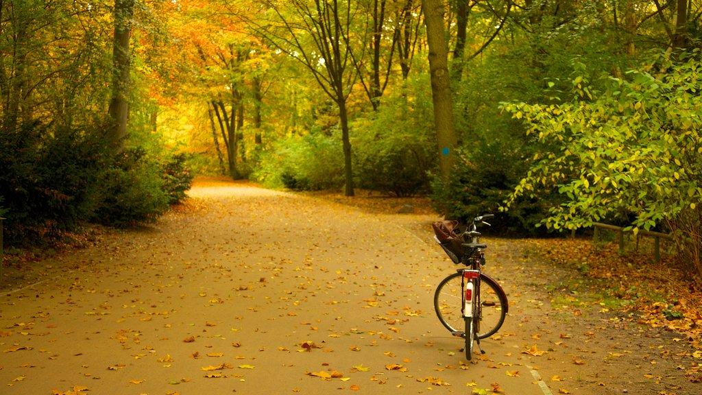 Tiergarten Soviet War Memorial featuring a park, cycling and autumn leaves