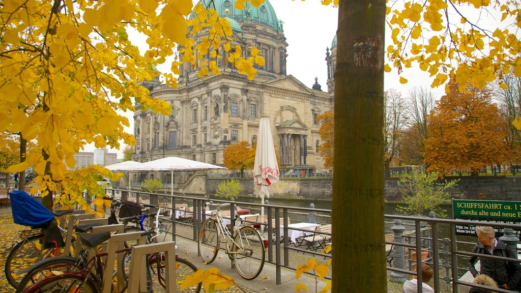 Berlin Cathedral showing street scenes, a city and fall colors