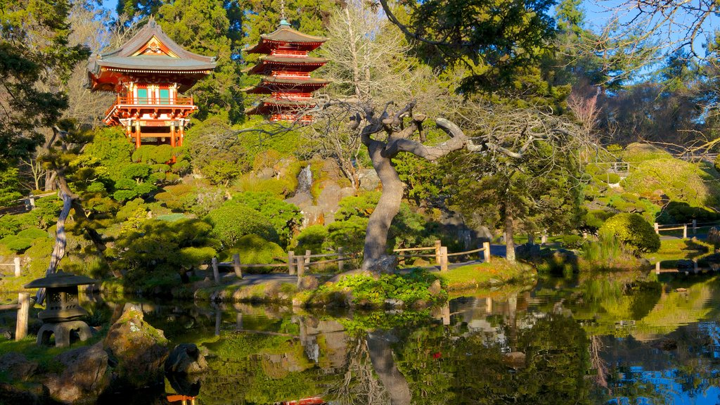 Japanese Tea Garden which includes forest scenes, a pond and a park