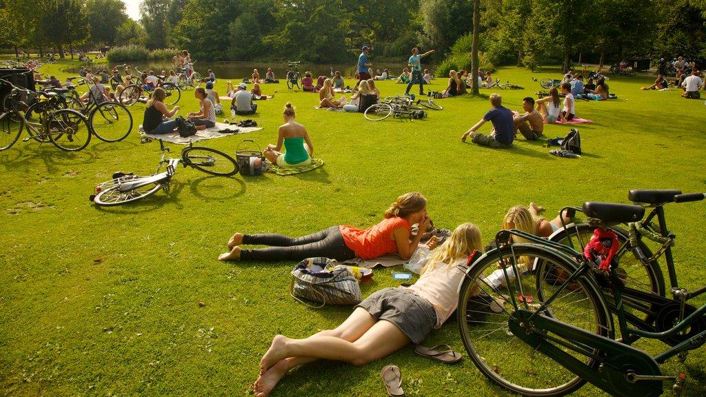 Ámsterdam mostrando ciclismo, ir de pícnic y un parque