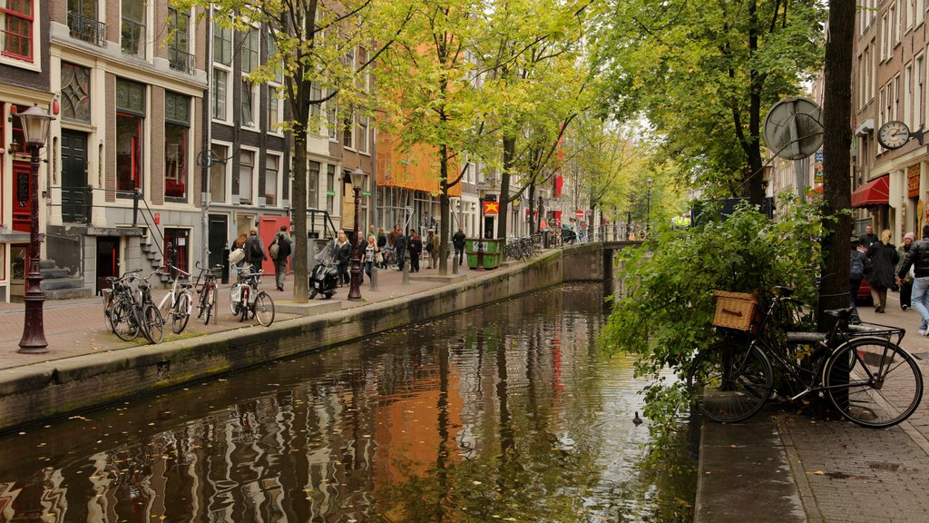 Amsterdam showing a city, cycling and street scenes